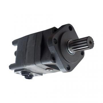 Motorino idraulico tetto apribile 13125670100 Fiat 500 Mk1 06-15 (43803 I-2-F-1)