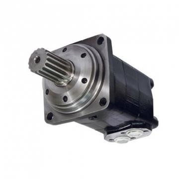 SCOOTER Elettrico Freni Idraulici Set, VIPER DUEL 2000W, 3200W, 5000W VS