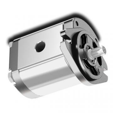 Flowfit Idraulico Cambio Pompa, Standard Gruppo 3, 4 Bullone Eu Flangia