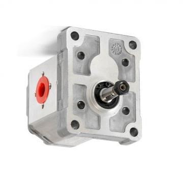 Buna Seal Kit per adattarsi standard di Gruppo 3, 3SPG GHISA FLANGIA GALTECH Pompa ad Ingranaggi