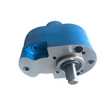 Alta pressione pompa acqua o olio
