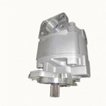 KUBOTA Motore D1105 3 CILINDRO ELECTRIC START POMPA IDRAULICA bowex M42ED KTR