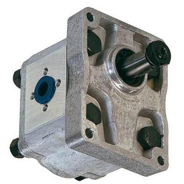 POMPA Sterzo Idraulico Kit Riparazione Guarnizione Massey Ferguson 290 390 399 3000 Trattore