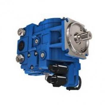 POMPA IDRAULICA si adatta NEW HOLLAND TS90 TS100 TS110 trattori.
