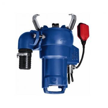 Pompa ad Immersione per Acqua Sporca Flow 750 Con Interruttore Galleggiante