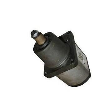POMPA IDRAULICA Gear 67110-23360-71 671102336071 per Toyota Carrello Elevatore 7FD20/30 #ZX