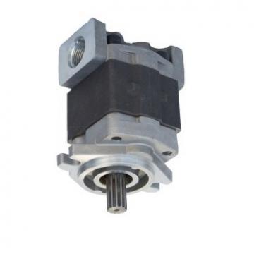 POMPA idraulica per Toyota Carrello Elevatore 7FD20 7FD23 7FD30 4Y 1DZ 67130-23360-71