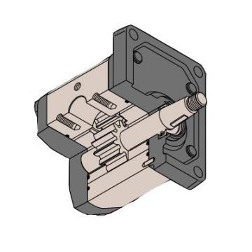 David Brown Hydraulic Gear Pump - R1C4045F3A1C